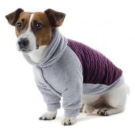 Трикотажные изделия для собак