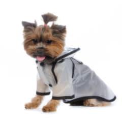 Комбинезоны-дождевики для собак