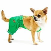 Штаны для собак