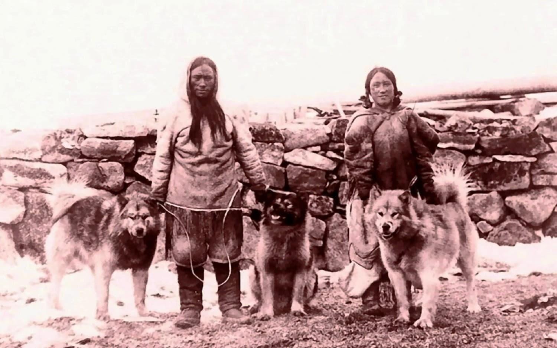 Историческое фото аляскинского маламута