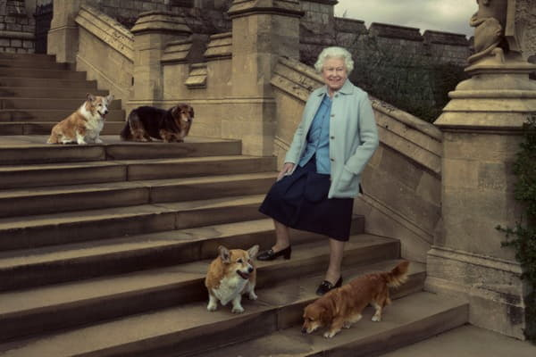 Королева Елизавета и корги