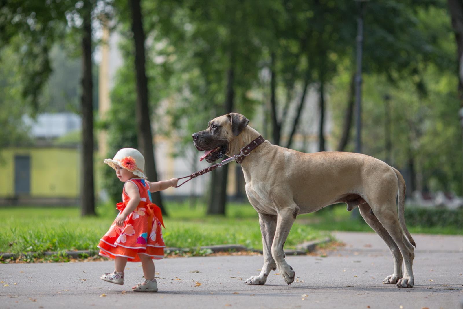 Прогулка с маленькой девочкой