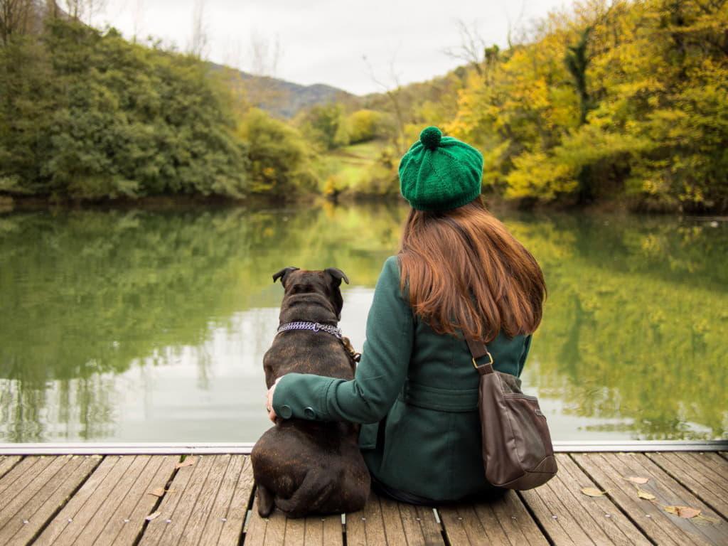 Стаффордширский бультерьер с девушкой