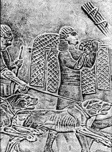Изображение предков Английских мастифов