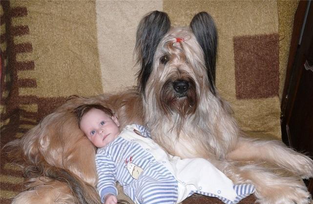 Бриар с маленьким ребенком